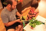 Repotting a Plant With Daddy