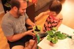 使用刀子切东西还有其它厨房里的活动使用刀子切东西还有其它厨房里的活动跟爸爸一起给植物换盆